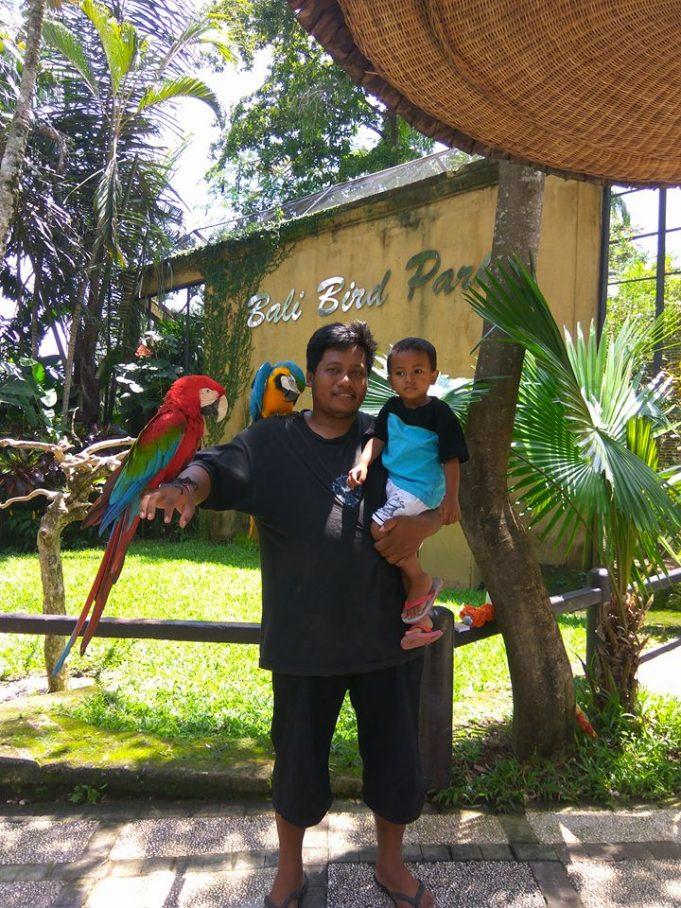 bali bird park singapadu bli ngurah
