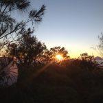 matahari-terbit-gunung-batukaru-blingurah